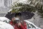 那不勒斯迎大雪天气