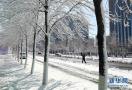 沈阳春雪袭城