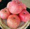 """""""条红苹果""""到底有什么神秘的地方?"""