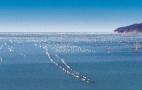 山东将打造两条海洋经济带 海洋强省建设方案公布