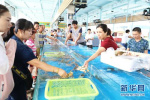 关注山东伏季休渔 与往年相比今年有哪些不同?