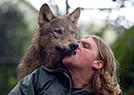 英国狼人养混血狼