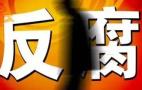 山东省蜂业良种繁育推广中心副主任尹旭升被查