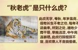 【国搜出品】立秋就凉快了吗?别忘了秋老虎!