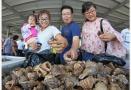 济南海鲜市场:货车首次违停被查司机承诺不再违停