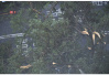 """""""山竹""""对海南的影响有多大——9月份影响海南台风大盘点"""