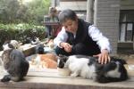 杭州年龄最大的爱喵人 雨雪无阻每天花近5个小时喂猫