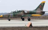 俄罗斯国防部:一架L-39教练机在飞行训练时坠毁