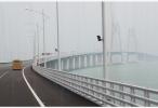 林郑月娥期望金融界携手特区政府推动大湾区资金流动