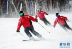 河北省近二十家冰雪企业亮相2019冬博会