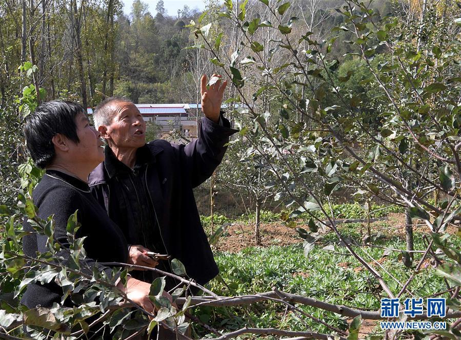 (图片故事)(6)古稀老人的幸福守望