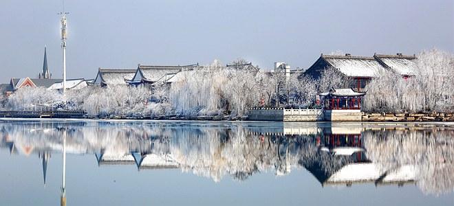 山东聊城:雾凇美景惹人醉