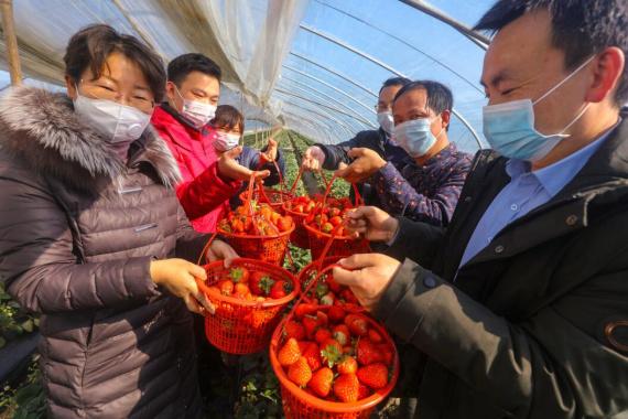 光山:扶贫干部为贫困户卖滞销农产品
