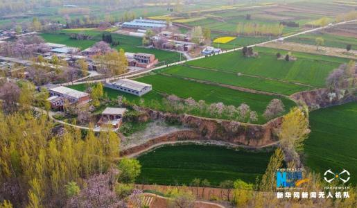 河南新安:高标准打造黄河生态廊道