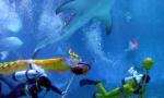 海洋公园水下舞龙迎端午 鲨鱼伴左右