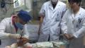 杭州一家医院,一天收治8名被蛇咬的伤者 钱江晚报 49分钟前 0 原创