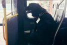 自己坐公交去公园 这只宠物狗也太聪明了吧