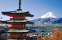 日本签证政策又变了?要提高门槛?!