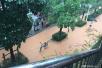 东北华北迎较强降雨 吉林将再遭暴雨