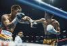 邹市明被日本拳手击倒痛失拳王金腰带 透露退役想法