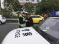 宁波高速上两男子把车停路边,上山采花去了