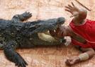 实拍泰国动物表演
