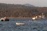 印度安德拉邦客轮发生倾覆 造成23人失踪
