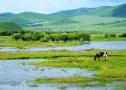 内蒙古赤峰来南阳推介旅游 看草原住蒙古包