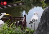 """李白写的""""二水中分白鹭洲""""是今天白鹭洲公园吗?"""
