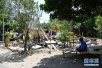 印尼龙目岛地震余震451次 死亡人数升至321人