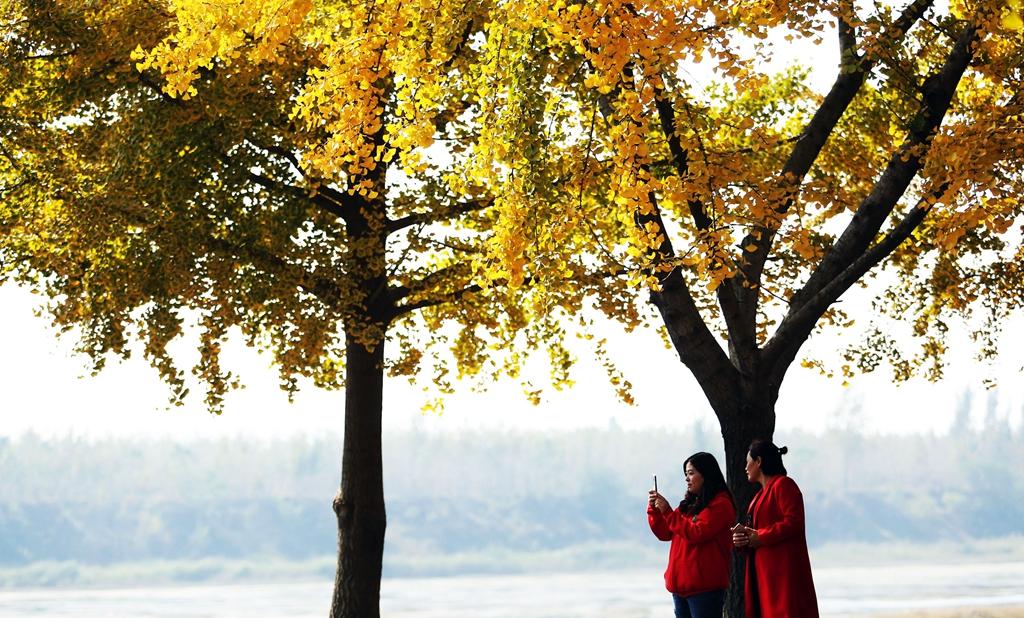 深秋的色彩