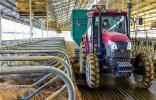 武强县打造畜牧业循环经济产业链