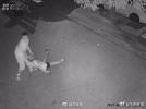 女子深夜被打发生在大连 未知的危险令人恐惧!