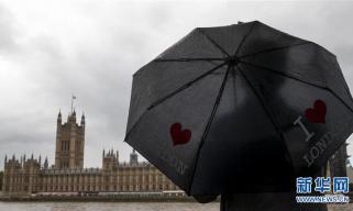 """""""脱欧""""协议达成 英国议会表决备受关注"""