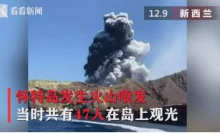 中国驻新使馆证实两名中国公民在怀特岛火山喷发中受伤