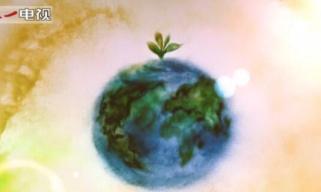 沙画丨英文MV《命运与共》助力全球抗疫